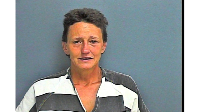 Deputies: Sevierville grandmother leads officers on chase with 2-year-old in car