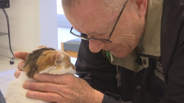 Knoxville veteran, cat that survived Gatlinburg fires form special bond