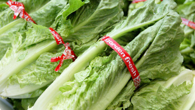 Safety Experts Say Avoid Romaine Lettuce If You're Not Into E. Coli