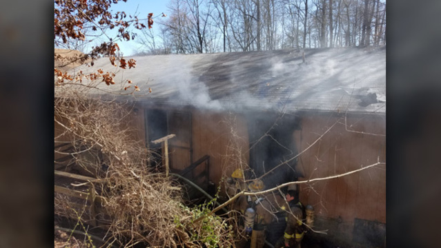 5 cats die in Heiskell house fire