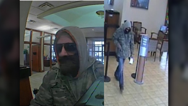 FBI: Man in fake beard robs East Knox County bank