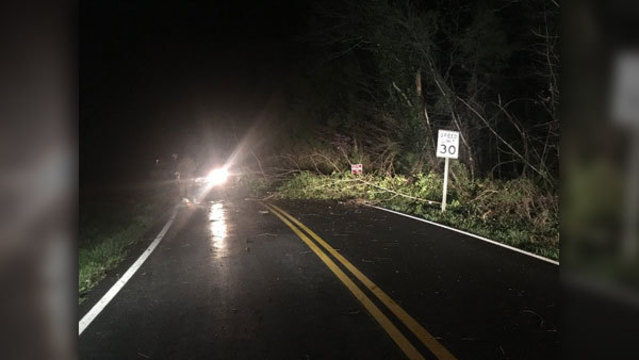 Storm downs powerlines, trees in East Tennessee