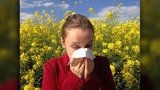 Dealing with your child's allergies
