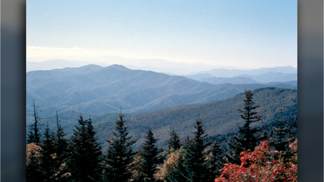 Great Smoky Mountains hosting volunteer days